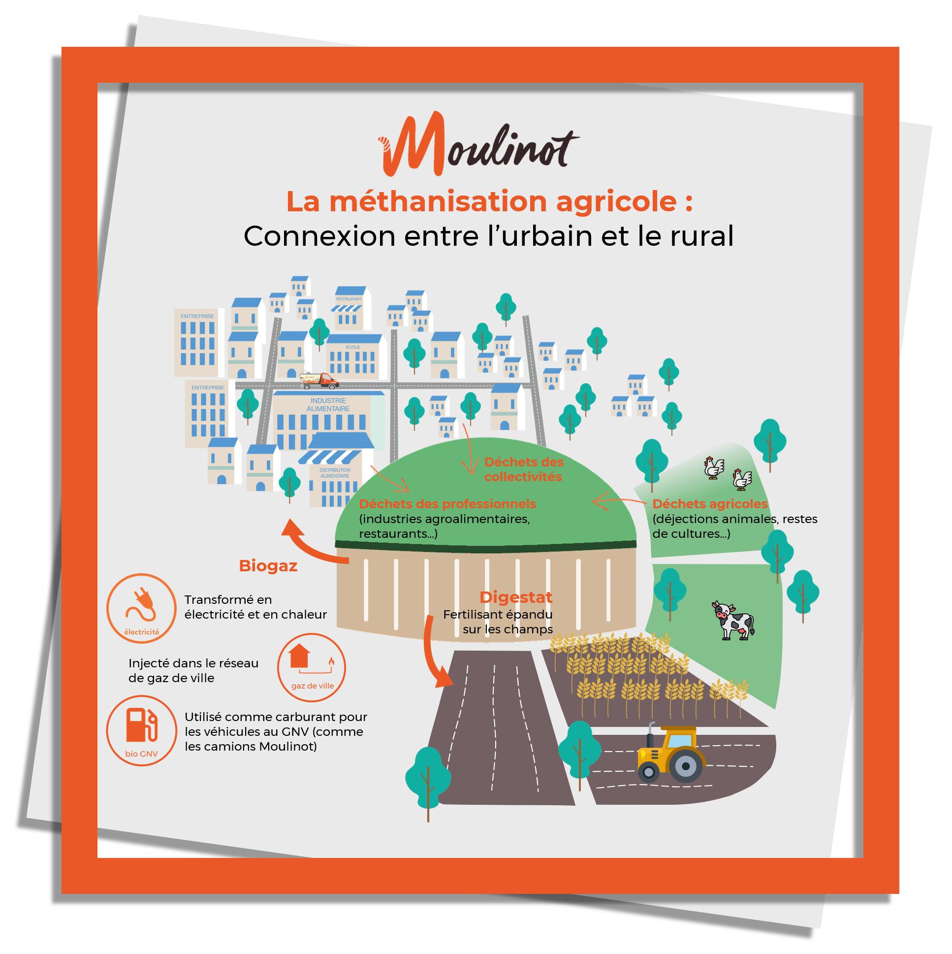 Moulinot collecte les biodéchets et les déchets alimentaires des collectivités et des professionnels (industries agroalimentaires, cantines, restaurants...) en Ile de France et à Paris. Ceux ci sont mélangés avec des déchets agricoles dans un méthaniseurs. Le méthanisation permet de créer du biogaz, injecté dans le réseau de gaz de ville ou utilisé comme carburant pour les véhicules fonctionnant au bioGNV. La matière restante, appelée digestat est utilisée comme fertilisant et épandu sur les champs. Economie circulaire